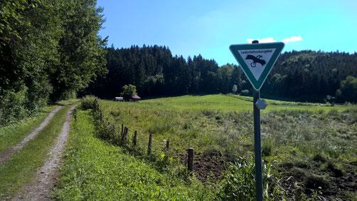 Der Naturschutz wird aufgeteilt in Flächenschutz und Artenschutz.