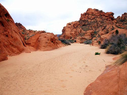 Trail zum Ephemeral Arch