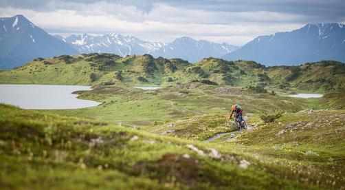 Brose e-Bike Motoren in der e-motion e-Bike Welt in Ihrer Nähe testen und kaufen