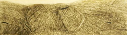 Feld, Tusche auf Papier, 180 x 55 cm