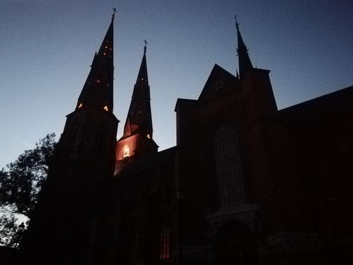Der Dom von Uppsala bei Nacht
