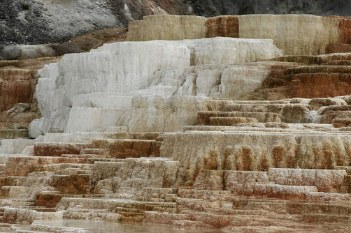 Terrassen der Mammoth Hot Springs im Yellowstone National Park