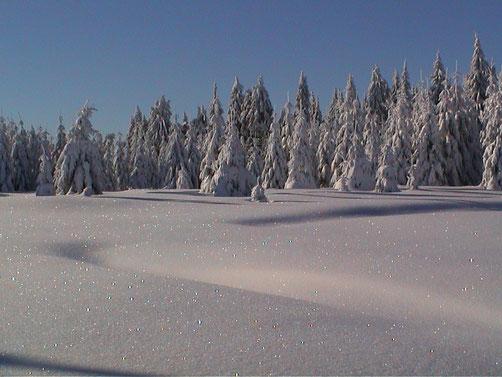 Winter auf dem Schiefergebirgsplateau