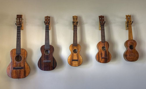 exposé guitare ukulélé