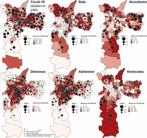 Figure 1 Causes of mortality per 100 000 per distrito of São Paulo