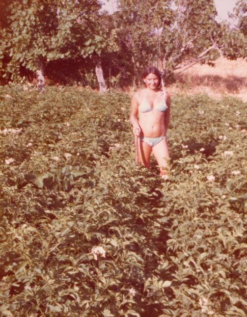 Regando patatas 2. Foto de Pedro.
