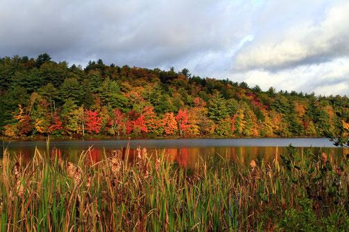 Berry Pond, Moultonborough, NH