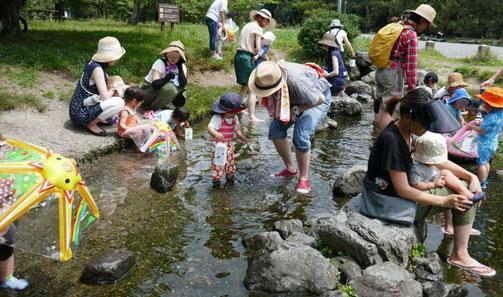 未就園児親子クラス(0~2歳児)の今日のレッスン場所は、京都御苑の出水の小川。赤お母様といっしょに水遊びに夢中です。