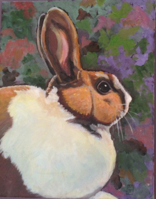 Ventura Rabbit  $700