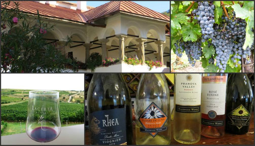 Manors & Wines by Auhero Travels - Weinreise durch die Walachei, auf den Spuren Nicolaes (Die Nicolae-Saga von Aurelia L. Porter)
