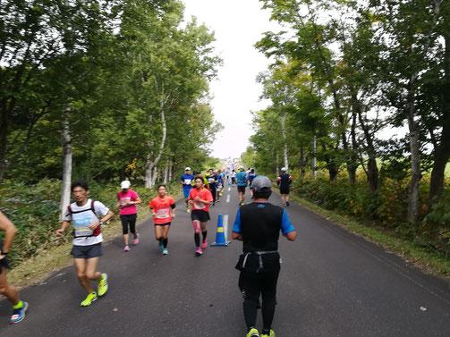 スタッフブログ オホーツク網走マラソンに参加しました 写真3 林の中を抜ける
