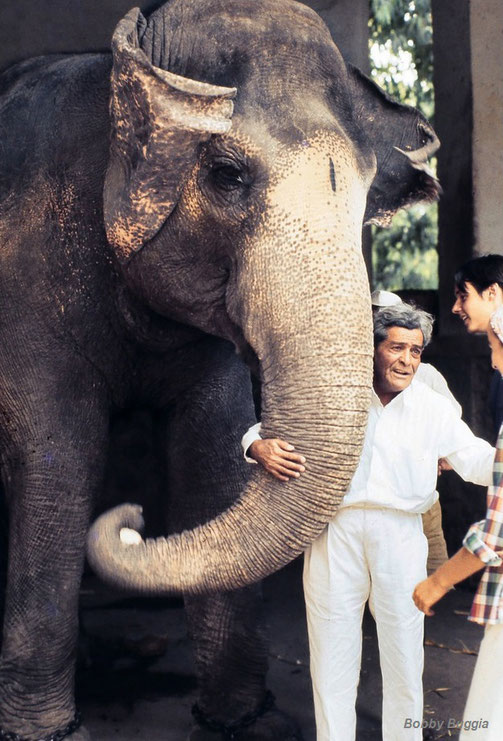 Meher Baba's brother Jal with Baba's favourite elephant at Poona Zoo. Photo courtesy of Bobby Buggia