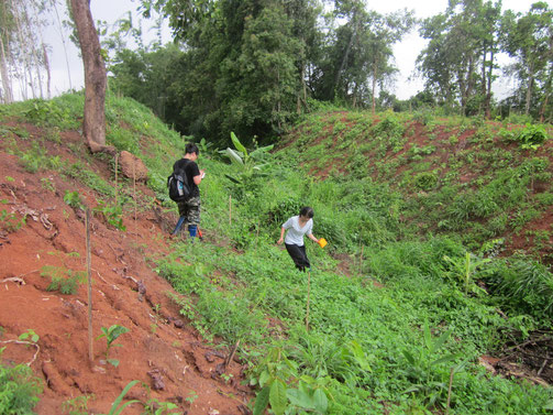 NUS students  helping with the survey of a moat near Chiang Saen, Thailand in 2013.