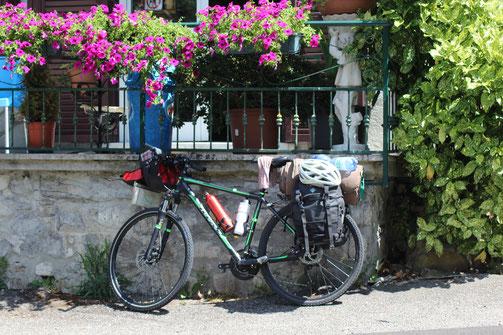 Fahrrad unter Blumen - (C) DasfliegendeKlassenzimmer.org