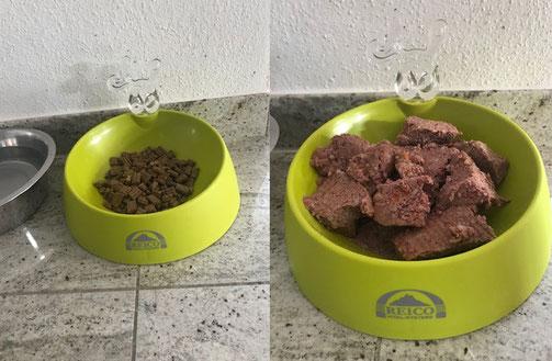 Artgerechtes Reico Futter bedeutet: dass bei Reico das Futter so zubereitet wird wie es die Natur vorgibt.