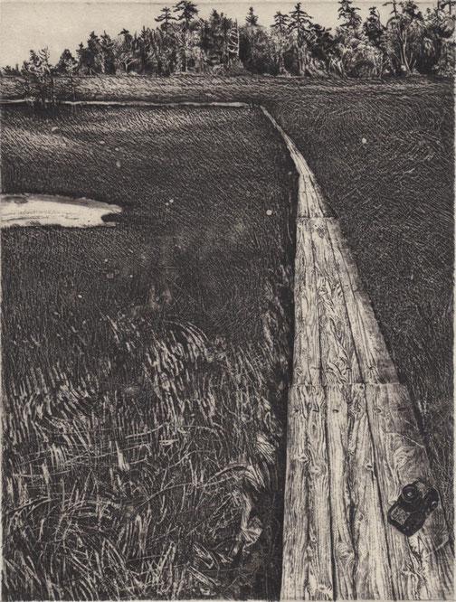 「Forgotten Camera -湿原の径」 2015 銅版画・雁皮刷り 20x15cm