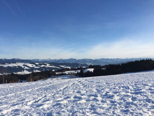 Ferienwohnung Scheidegg | Bergpanorama