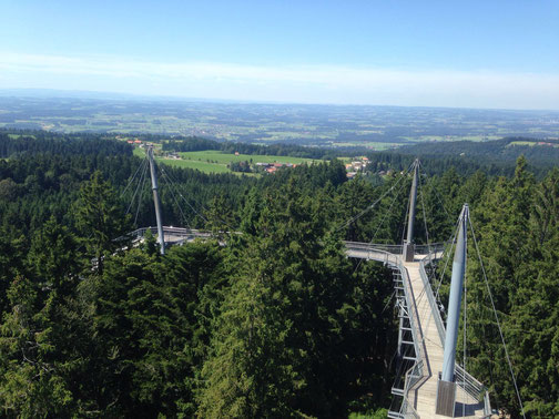 Ferienwohnung Scheidegg | Skywalk Allgäu
