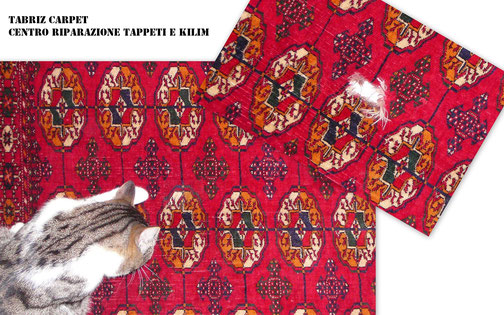 Tarcento-Tabriz carpet Udine via molin nuovo parelle viale Tricesimo, restauro tappeto buchara russo