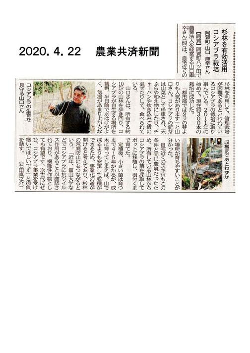 200422農業共済新聞コシアブラ