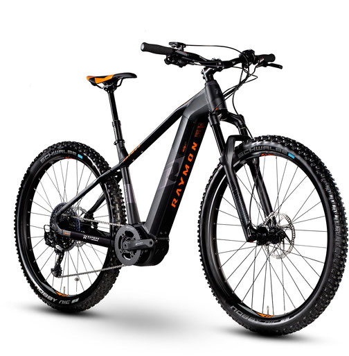 R Raymon E-Nineray - e-Mountainbike - 2020