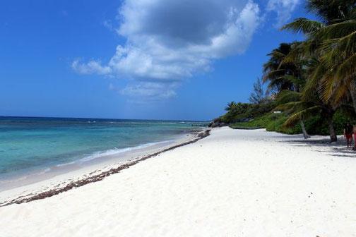 Stopps Beach, Cayman Islands, MSC Divina