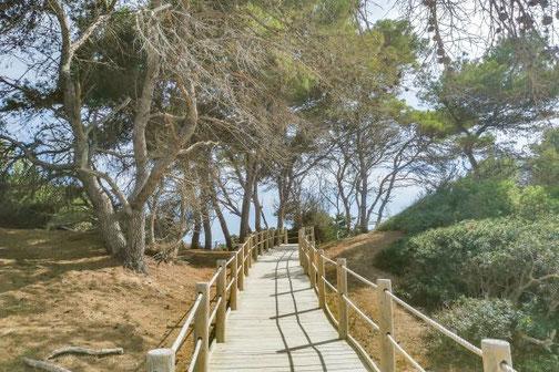 Ibiza, Balearen, Buchten, Strände, Die Traumreiser, Platja de ses Salines