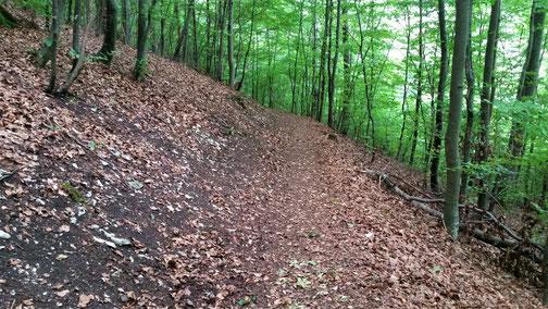 Meist ist der Weg abfallend - bei Nässe wäre das ne super Rutschbahn...