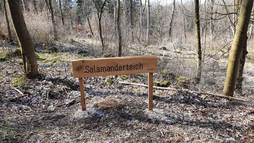 Ob da auch tatsächlich Salamander zu sehen sind...