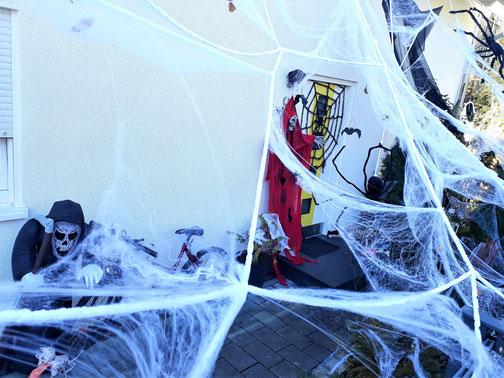 Die Spinnenfäden sind echt - oder doch nicht?...