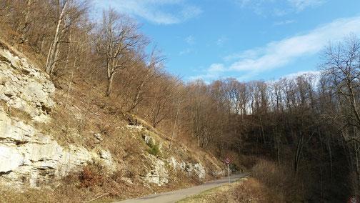 D'Gosbacher Stoig...