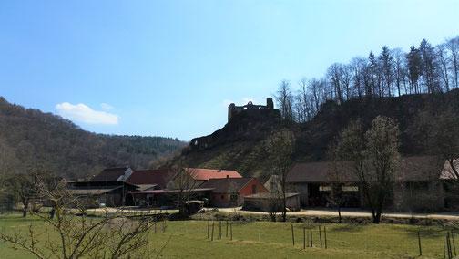 Burg Bichishausen (leider im Schatten)