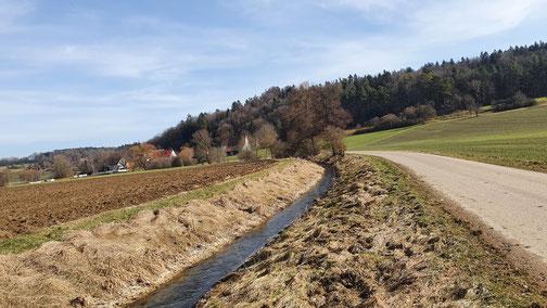 Ein seltenes Bild - die Lone führt hier noch jede Menge Wasser...