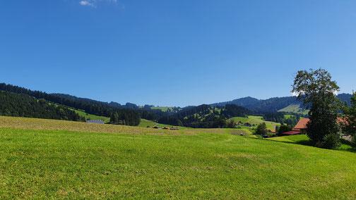 Sanfte Hügel auf der Nordseite des großen Alpsee...