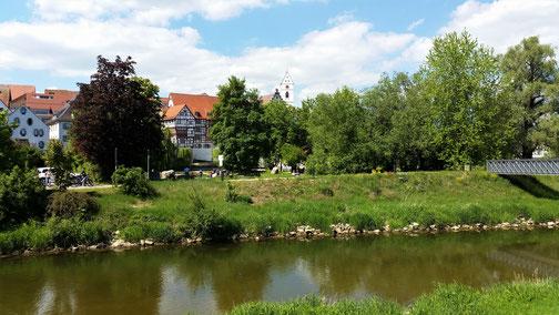 Blick auf Riedlingen (ist größer als es hier aussieht)...