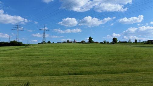 A frisch gmähts Wiesle... Blick Richtung Amstetten Dorf