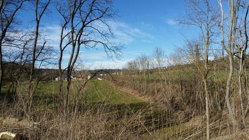 Blick in Richtung Halzhausen (entlang der Bahnstrecke)...