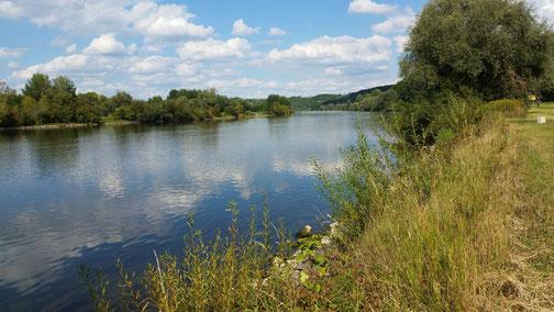 Fast regungslos liegt die Donau im Halbschlaf...