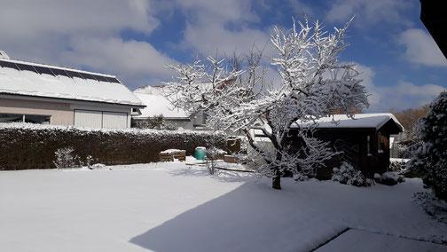 Der Winter ist zurück gekommen...