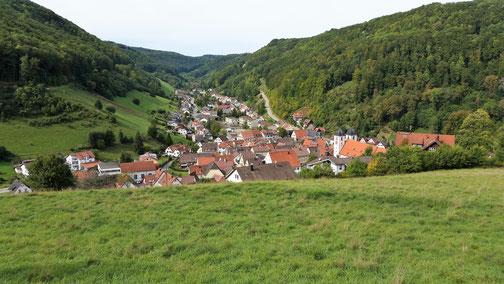 Ein Blick auf Wiesensteig (auf der Fahrt nach Westerheim eine willkommene Pause)...