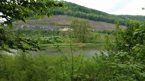 Über dem kleinen See ist die Zugstrecke (aus dem Fels gehauen) in Richtung Ulm