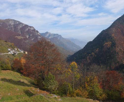 Wildromantischer Blick über das herbstliche Tal mit farbigem Laub.