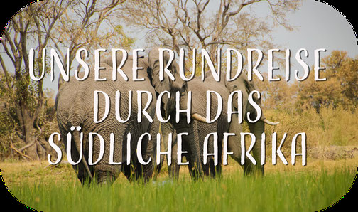 Oryx Antilope, Seriem Camping, Namibia, Campingplatz, Afrika