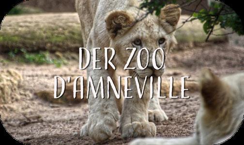 Weißer Löwe Amneville