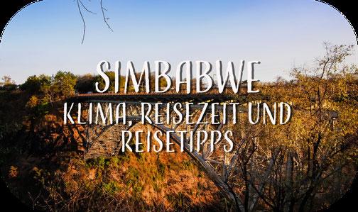 Warzenschwein, Pumpa, Simbabwe
