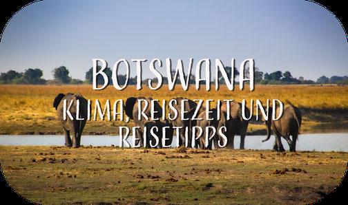 Elefant, Okavango Delta, Botswana, Afrika