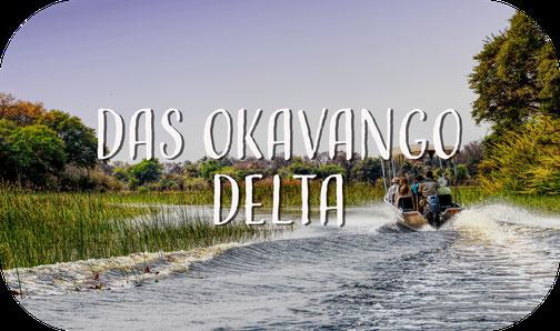 Okavango Delta, Botswana, Afrika, Maun, Schnellboot, Fluss