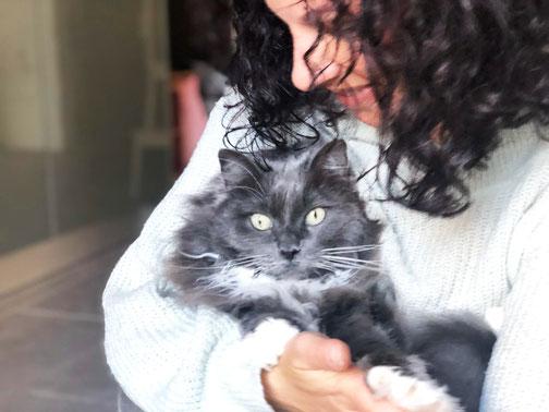 Sheinah mit Frauchen und Tierkinesiologin Sandra Pfyffer Briker © KineCAT