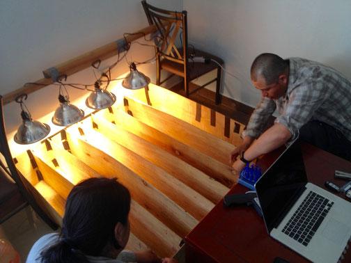 Obtencion de temperaturas de lagartijas en laboratorio. Foto: Jorge H. Valdez