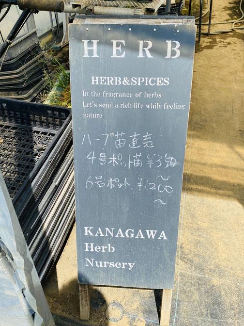 黒板に書かれた苗の値段